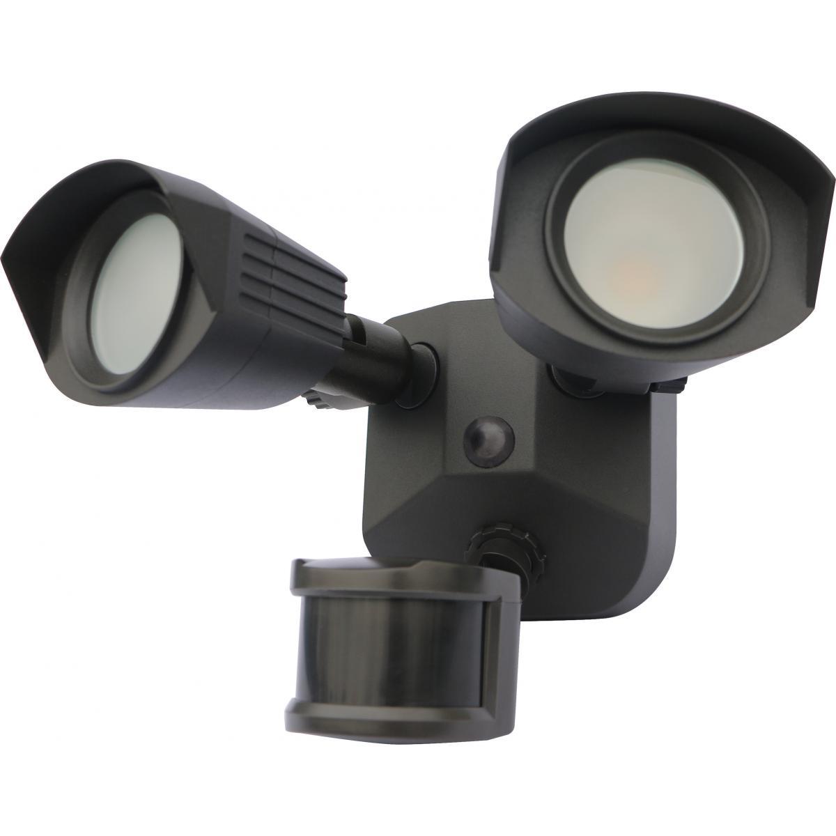 65-213 LED DUAL HEAD SECURITY LIGHT
