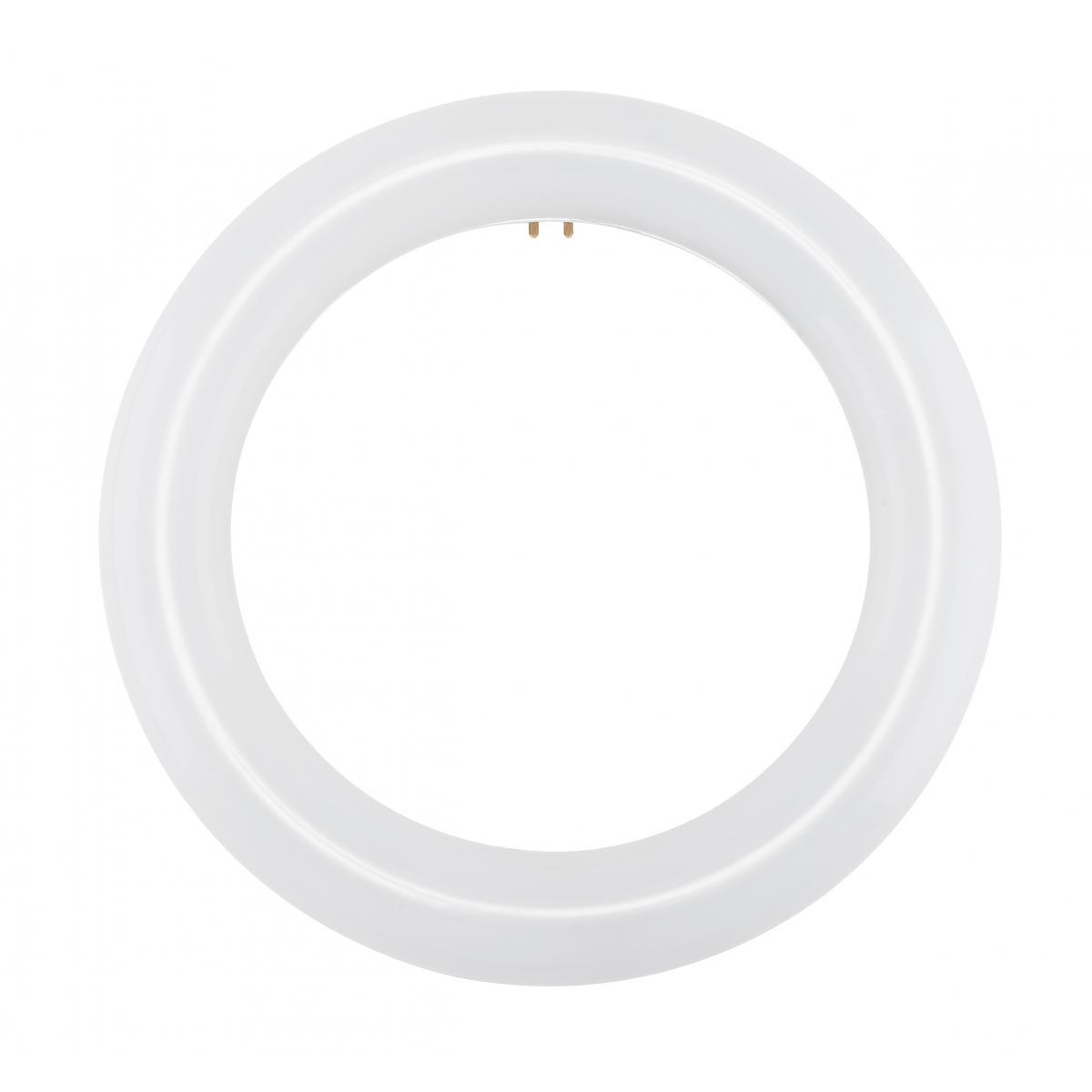 S16501 FC8T9/LED/CIR/840/BP